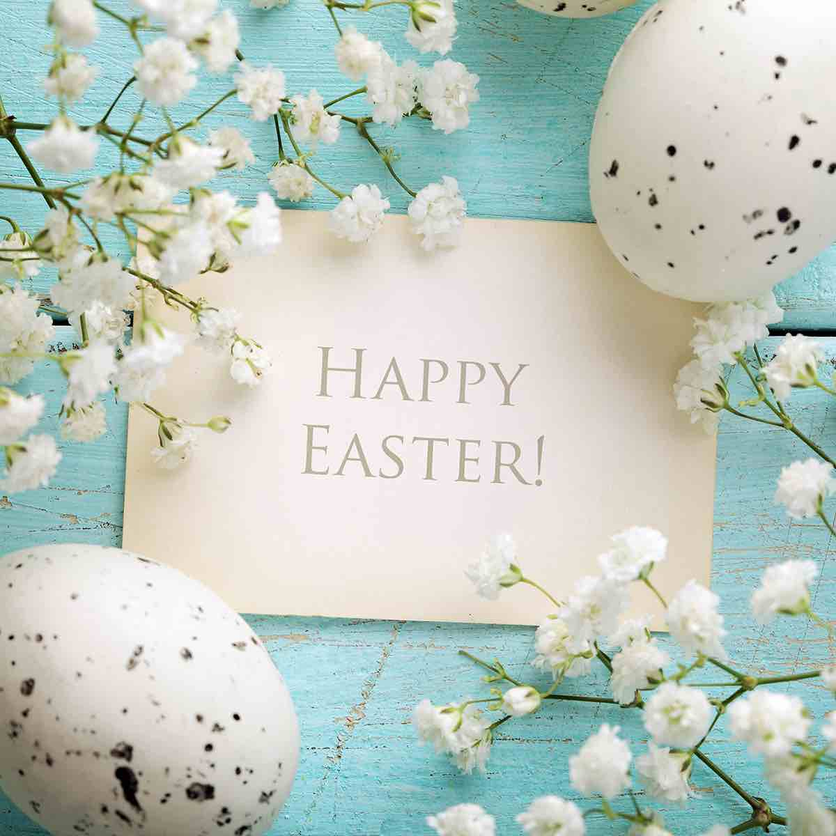 Happy Easter from Prime Dental Associates - Johnsburg IL